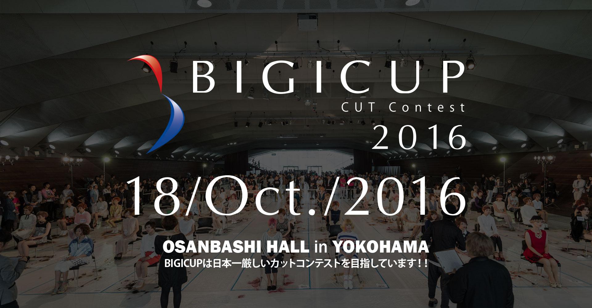 BIGICUP2016