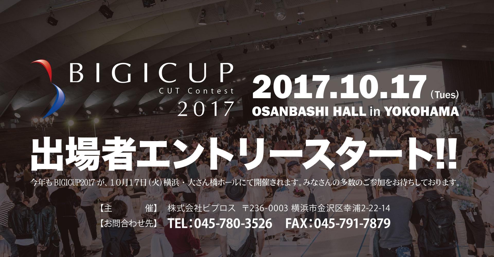 IGICUP2017
